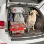 Koira automatkalle turvallisesti