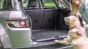 Koira autossa? Esittelyssä täsmätuotteet koiranomistajalle